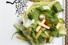 Grelhado com salada (frango)